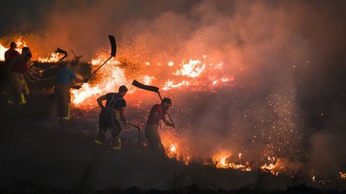 Fire blaze at Winter Hill near Bolton may take decades to restore