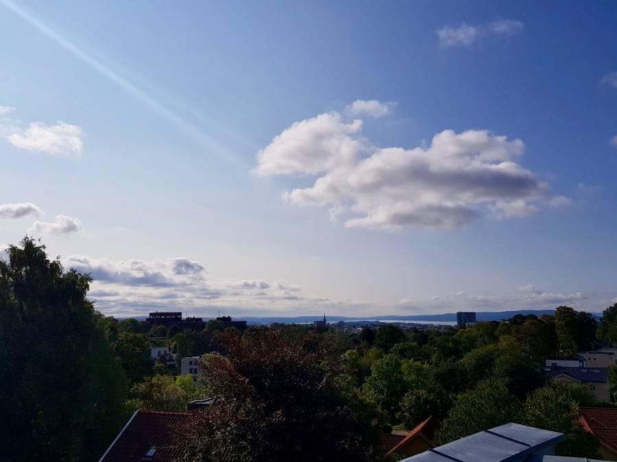 Oslo View II By Ingemar Pongratz